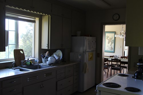 Kitchen in Asian Pacific American House